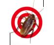 Тараканы! У Вас завелись такие не приятные соседи? Бытовая химия не поможет! Звоните нам! Гарантия!, фото — «Реклама Алупки»