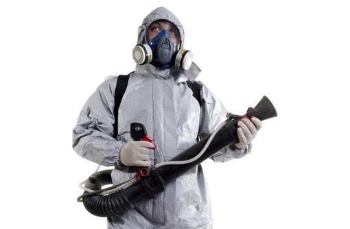 Трупный запах? Не приятно и очень вредно! Не стоит выкидывать всю мебель и делать ремонт! Звоните!, фото — «Реклама Армянска»
