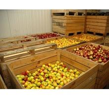 Холодильная камера и агрегат для яблок в Феодосии и КРыму. Поставка, монтаж, сервис. Фруктохранилище - Продажа в Феодосии