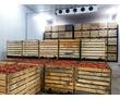 Сэендвич-панели и холодильные камеры в Бахчисарае. Продажа, сборка, монтаж. Доставка по Крыму, фото — «Реклама Бахчисарая»