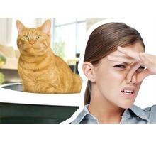 Дезодорация! Избавление Вашего помещения либо транспорта от любых запахов! - Клининговые услуги в Севастополе