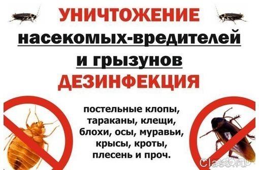 СевДезинфекция!  Борьба с вредителями! - Клининговые услуги в Севастополе