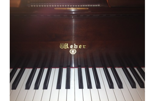 Настройка пианино, роялей, фото — «Реклама Севастополя»