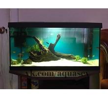 Обслуживание аквариумов,продажа оборудования - Продажа в Севастополе