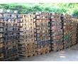 Продам поддоны деревянные 800х1200 мм. г. Севастополь, ул. Индустриальная, 12, фото — «Реклама Севастополя»
