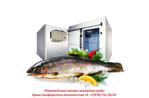 Монтаж,установка холодильных камер,камер заморозки. - Услуги в Севастополе
