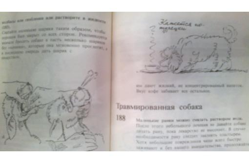 Продам в Севастополе справочную книгу: 400 советов любителю собак - Книги в Севастополе