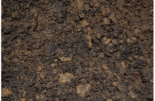 Чернозем хорошего качества для садово-огородных работ по оптимальной цене - Грунты и удобрения в Севастополе