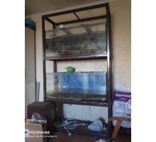 Продам стеллаж с двумя аквариумами - Аквариумные рыбки в Севастополе