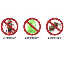 Качественное профессиональное уничтожение тараканов, клопов,клещей,истребление грызунов,дезинфекция - Клининговые услуги в Феодосии