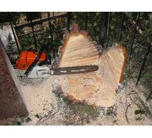 Спил деревьев по доступным ценам - Ландшафтный дизайн в Симферополе