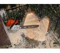 Спил, обрезка  деревьев по доступным ценам. - Строительные работы в Симферополе