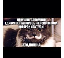 депиляция воском. шугаринг - Уход за лицом и телом в Севастополе