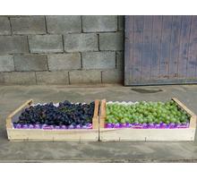 Ящики,лотки,упаковка  фруктов и овощей от производителя - Эко-продукты, фрукты, овощи в Красногвардейском