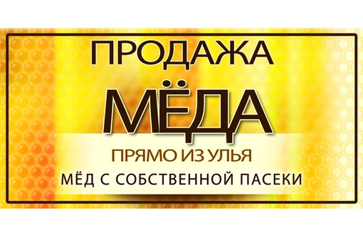 Продам натуральный мёд (разнотравье) - Пчеловодство в Белогорске