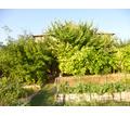 Продам дом в с. Тенистое Бахчисарайского района у леса - Дома в Бахчисарае
