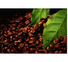 Купить Экстракт черного кофе - Косметика, парфюмерия в Крыму