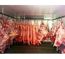 Низкотемпературные холодильные установки для мяса. - Продажа в Белогорске