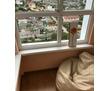 Сдается 1-комнатная, улица Руднева, 25000 рублей, фото — «Реклама Севастополя»
