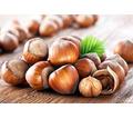 Продам очень вкусный орех - фундук. - Эко-продукты, фрукты, овощи в Севастополе