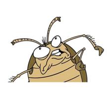 Дезинфекция-дезинсекция, травим тараканов, клопов от 1000 рублей - Клининговые услуги в Белогорске