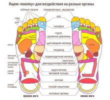 Тайский рефлекторный массаж стоп  и ног - Массаж в Симферополе