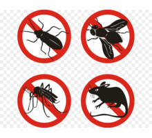 Уничтожение насекомых и грызунов. Белогорск - Клининговые услуги в Белогорске