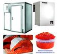 Холодильное Оборудование для Холодильных Складов и Камер . - Продажа в Севастополе