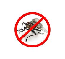 Дезинсекция! Уничтожение мух в Алупке! Гарантия 100 % результата! Безопасно! Без запаха!Жмите! - Клининговые услуги в Алупке