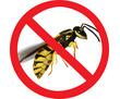 Дезинсекция! Уничтожение ос и шершней в Алупке! Гарантия 100 % результата! Безопасно! Без запаха!, фото — «Реклама Алупки»