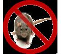 Дератизация! Уничтожение крыс в Алупке! Умирают на улице! Без запаха! Безопасно! Жмите! - Клининговые услуги в Крыму