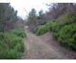 Продам участок - 20 соток земли возле трассы в Алупке, фото — «Реклама Алупки»