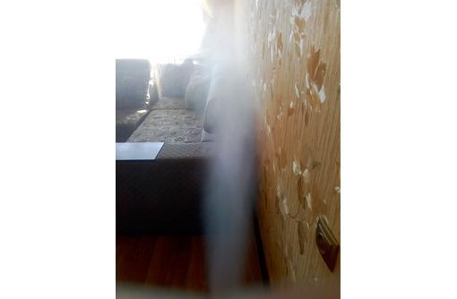 Как быстро и эффективно избавиться от тараканов. Профессиональная дезинсекция!, фото — «Реклама Севастополя»