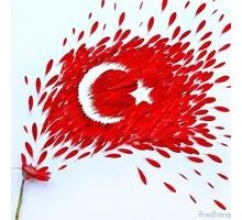 Курсы турецкого языка для желающих - Языковые школы в Крыму