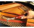 г. Севастополь. Профессионально настрою пианино. Владимир., фото — «Реклама Севастополя»