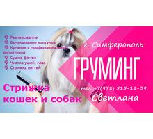Стрижка ваших пушистиков: собак и кошек, комфортно и без стресса. - Груминг-стрижки в Крыму