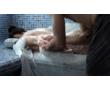 В банный комплекс  «Орловские бани» требуются женщины и мужчины для общей работы., фото — «Реклама Севастополя»