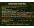 Сауна, банька в Севастополе - комплекс «Лагуна и Ладья»: отличный отдых на свежем воздухе!, фото — «Реклама Севастополя»