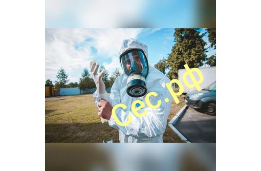Дезинфекция для профилактики заболеваний , вызываемых короновирусами и других вирусных заболеваний!, фото — «Реклама Евпатории»