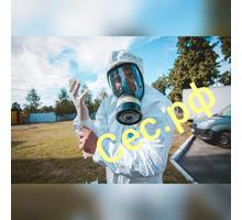 Дезинфекция для профилактики заболеваний , вызываемых короновирусами и других вирусных заболеваний! - Клининговые услуги в Форосе