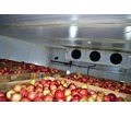 Монтаж Холодильных Камер для Хранения Яблок в Крыму. - Услуги в Крыму