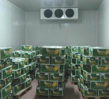 Холодильные Установки для Овощехранилищ. Доставка Монтаж - Продажа в Белогорске
