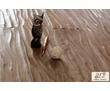 Массивная доска EuroDeck Лавор Дал (дуб)  от 5500 руб./м2. Бесплатная доставка по Крыму, фото — «Реклама Бахчисарая»