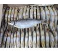 Рыба вяленая, большой ассортимент - Продукты питания в Севастополе