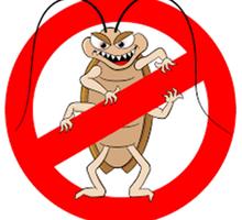 Дератизация, дезинсекция, дезинфекция. Уничтожение насекомых и грызунов. - Клининговые услуги в Феодосии
