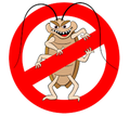 Дератизация, дезинсекция, дезинфекция. Уничтожение насекомых и грызунов. - Клининговые услуги в Джанкое