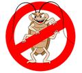 Дератизация, дезинсекция, дезинфекция. Уничтожение насекомых и грызунов. - Клининговые услуги в Алупке