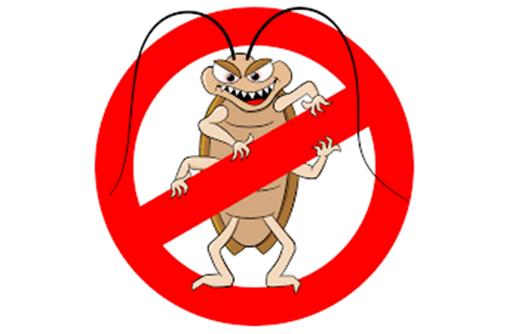 Дератизация, дезинсекция, дезинфекция. Уничтожение насекомых и грызунов., фото — «Реклама Армянска»
