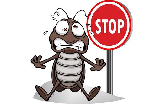 Дезинфектор. Дератизация, дезинсекция, дезинфекция. Полное уничтожение насекомых и грызунов. - Клининговые услуги в Саках
