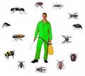 Уничтожение насекомых и грызунов. Дезинфекция, дезинсекция, дератизация. Профессионал Дезинфектор. - Клининговые услуги в Алупке